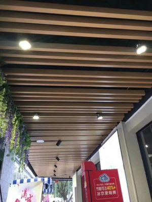 Suspended Ceiling Outdoor 1