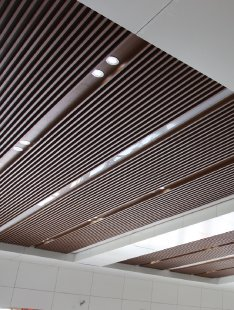 Suspended Ceiling NZ Series